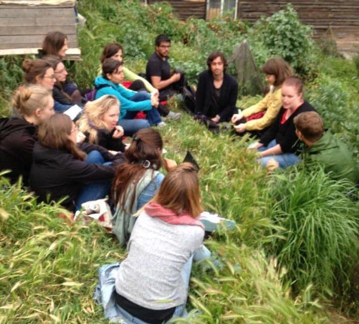 Kentsel tarım öğrencileri Roma bostanındaydı